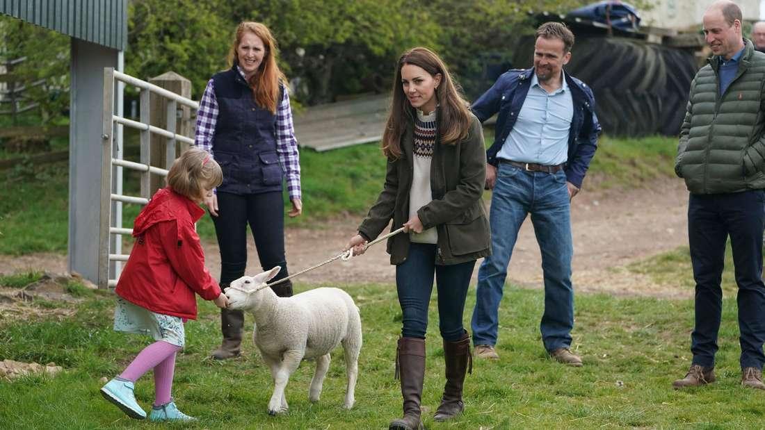 Herzogin Kate hält ein Lamm an einem Seil fest, das von einem Mädchen gefüttert wird. Im Hintergrund stehen Prinz William und zwei weitere Personen.
